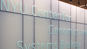 NYU Center for Genomics and Systems Biology